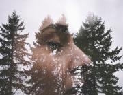 spiritual woman woods